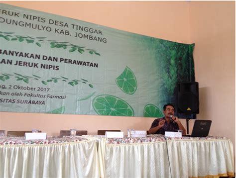 Bibit Jeruk Nipis Jombang penyuluhan perbanyakan penanaman dan perawatan tanaman