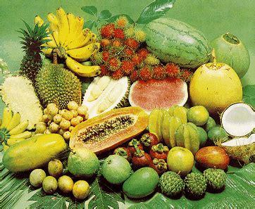 Dan Jenis Juicer juice buah untuk beberapa jenis penyakit