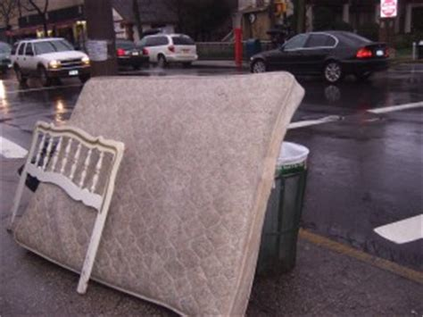 how to dispose of a mattress bed bug detectives