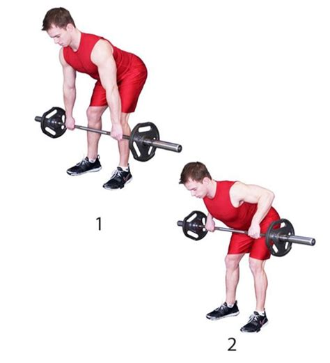 the 30 most powerful arm the 30 most powerful arm exercises for titanic toned arms