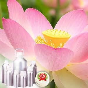 lotus pharmaceuticals india lotus 100 buy lotus at