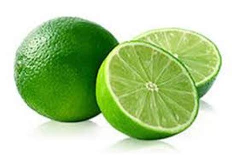 Bibit Jeruk Nipis Yang Bagus gambar jeruk nipis