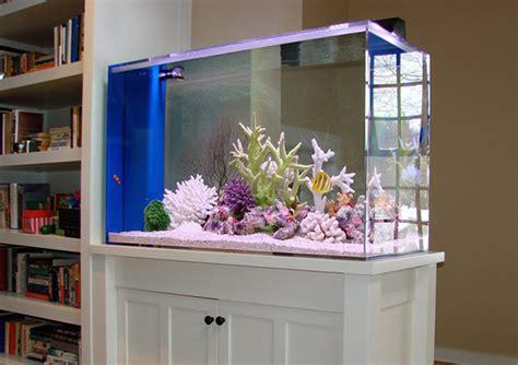 interior design aquarium wall decor hair blog