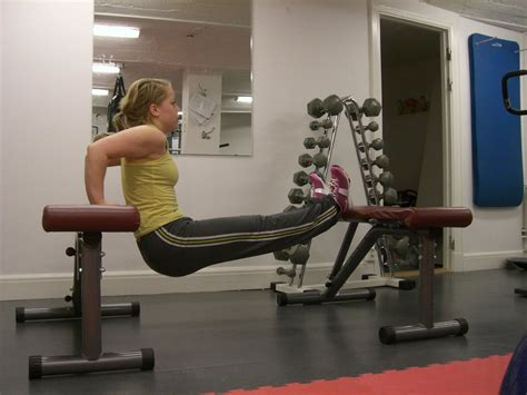 triceps bench dips train body and mind