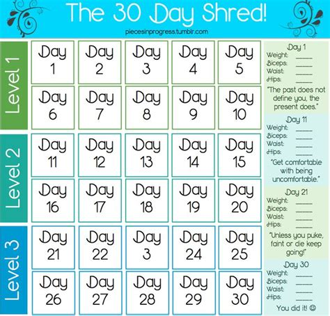 Detox Before Workout Program by Best 25 30 Day Shred Ideas On Shred