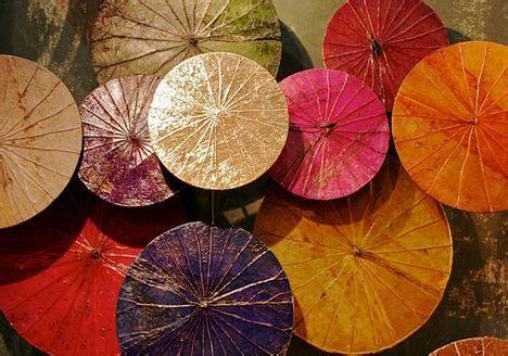 dried lotus leaf dried lotus leaves we color