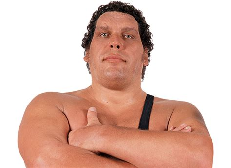 What Gift Cards Does Giant Sell - wweshop andre the giant official merchandise
