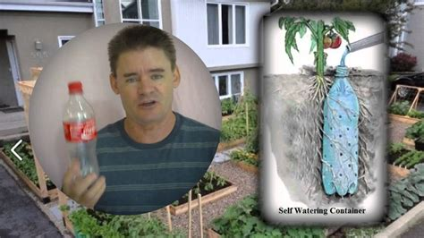 self watering underground self watering recycled bottle system youtube