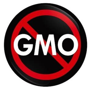 Bellaire Detox Wellness by What Are Genetically Modified Organisms