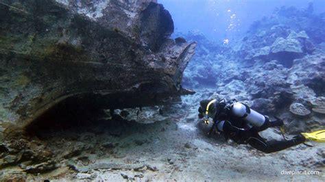 dive cook islands cook islands diving resorts liveaboards diving cook