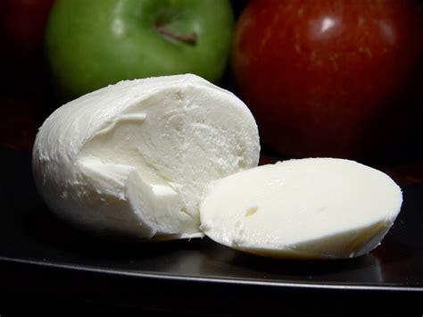 Mozarella Cheese 1 recognizing the most italian cheeses rizkyana s