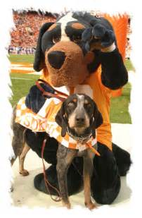 Ut Mascot Of Tennessee Official Athletic Site Inside