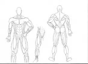 Muscular System Coloring Pages Muscular System Coloring Pages Coloring Home by Muscular System Coloring Pages