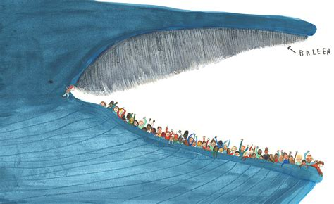 old boat blue book the blue whale by jenni desmond