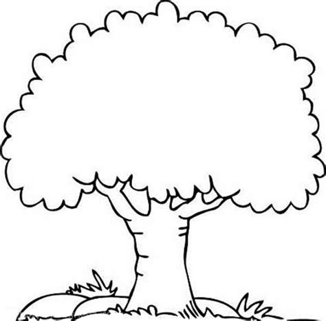 tree coloring pages free printable coloring pages