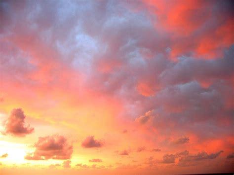 vanilla sky quotes quotesgram