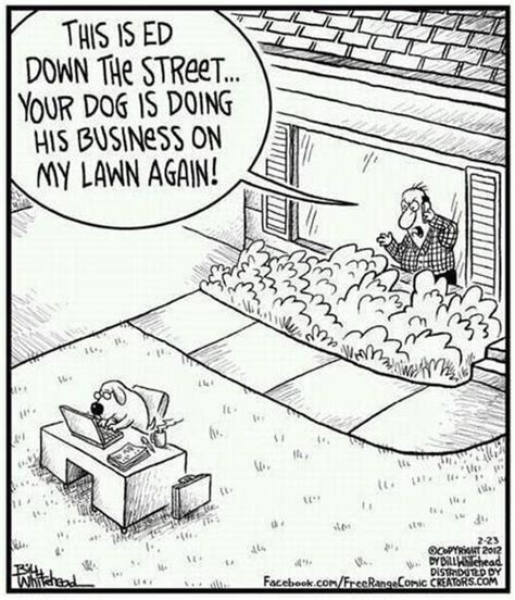 hilarious hoa stories 29 best lawn care humor images on pinterest vegetable