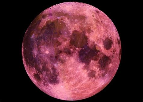 pink moon april 2017 full pink moon tonight april 11 2017 171 martin county times