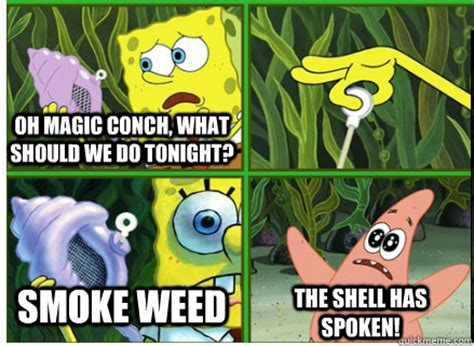 Spongebob Weed Memes - nothing magic conch shell quickmeme