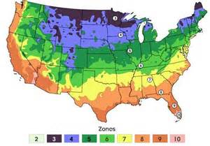 if you question the numbers ask the plants simple climate
