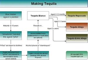 how to make tequila