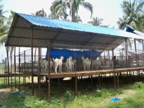 Goat Farming Shed by Suresh Devaraj Goat Farm Goat Shed