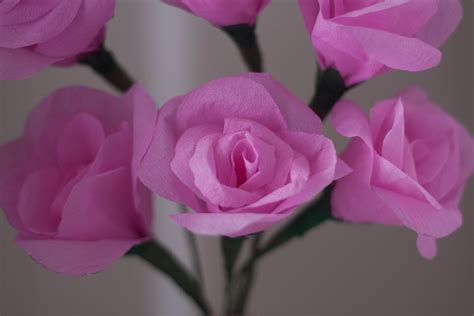make your own beautiful crepe paper flowers