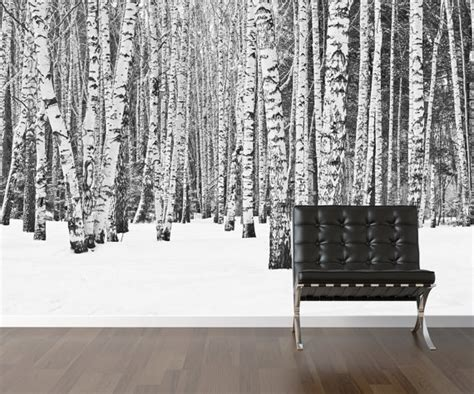 peel and stick wall covering items similar to birch tree wallpaper repositionable peel