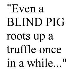 Even A Blind Pig quot even a blind pig roots up a truffle once in a while