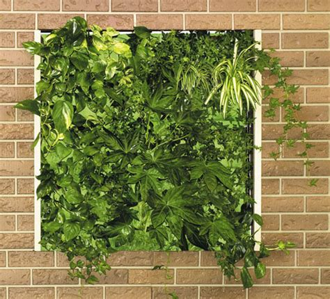Vertical Garden Interior Interior Vertical Garden Design Ideas Home Trendy