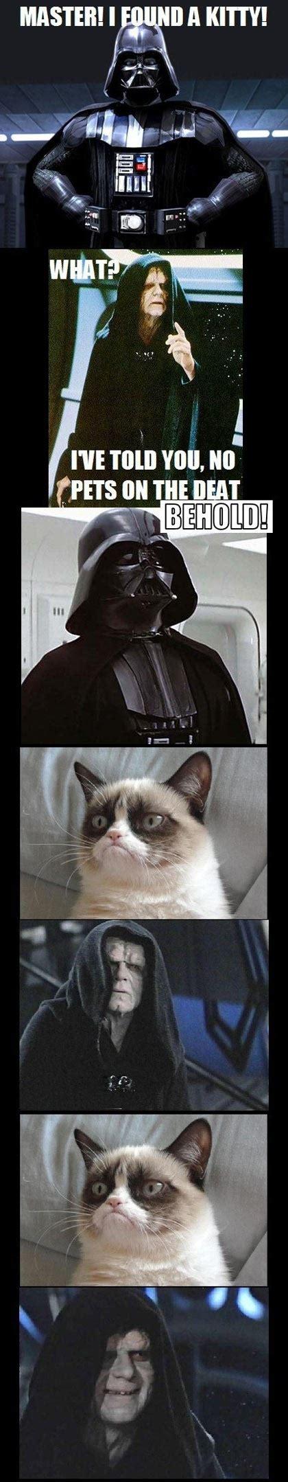 Star Wars Cat Meme - darth vader found grumpy cat grumpy cat know your meme