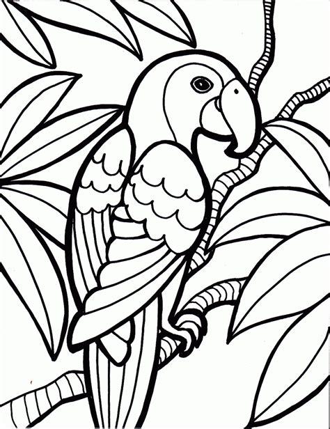 parrot bird coloring pages gif  pixels