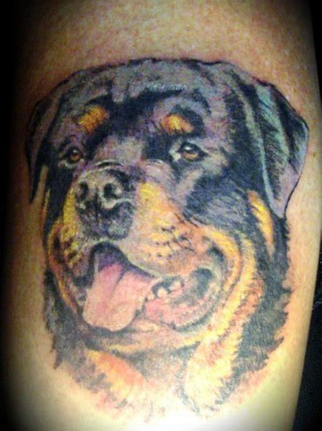 rottweiler tattoos rottweiler personal picture picture