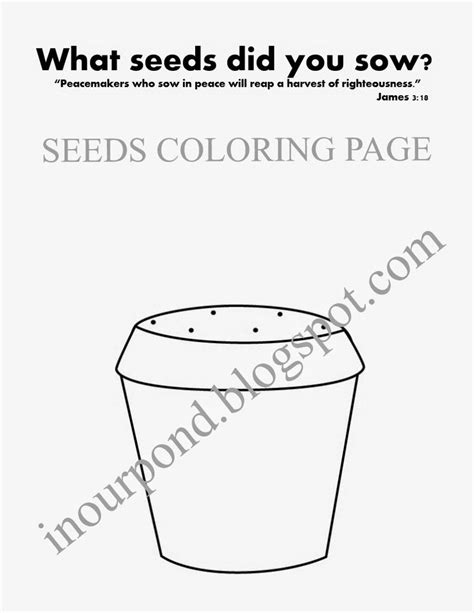 coloring page of a pumpkin seed pumpkin seed coloring page pages sketch coloring page