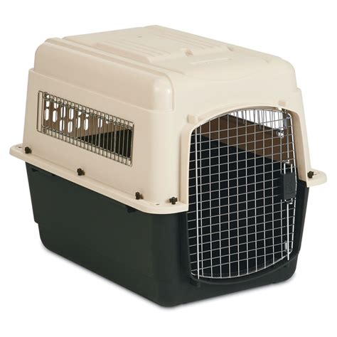 crate for puppies petmate ultra vari kennel vari kennel and plastic crate from petco