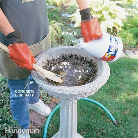 how to clean a bird bath the family handyman