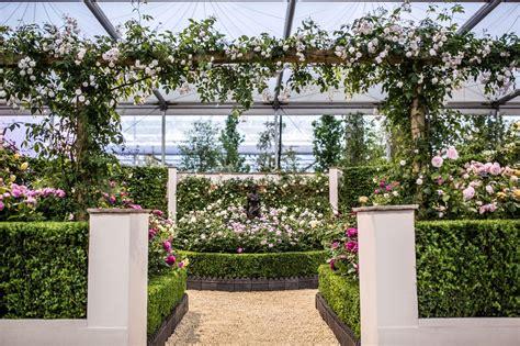 rhs chelsea flower show 2015 gallery