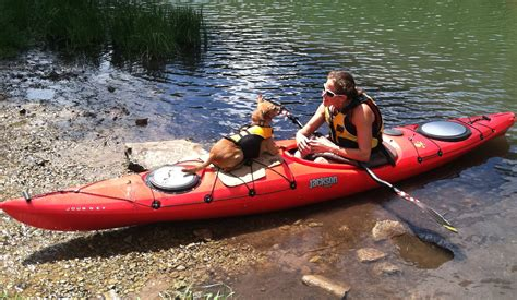 kayak for dogs so ya wanna go paddlin with your huh jackson kayak