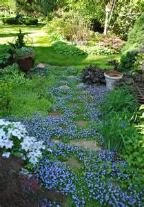 Patio Ground Cover by