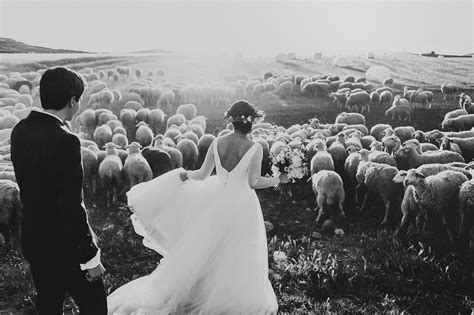 Best Wedding Photo by The 2015 Best Of The Best Wedding Photography Collection