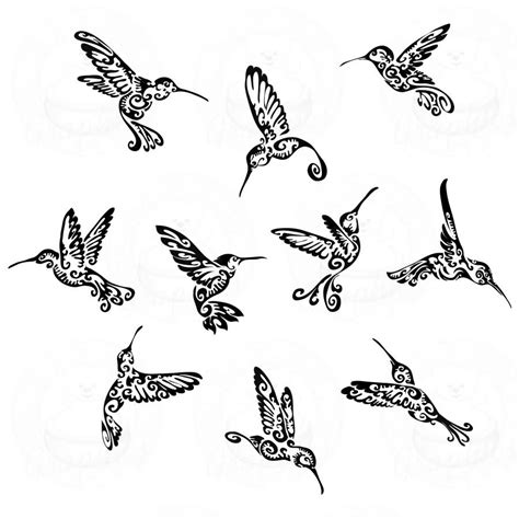 tribal bird tattoos 38 hummingbird designs and ideas