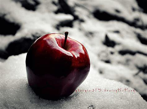 Apple Snow White apple snow rezepte suchen