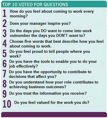 meaningful work a quest to do great business find your calling and feed your soul books employee questions problems with standard employee