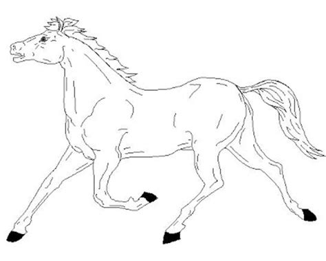 coloring pages of horses running running coloring page colorings net