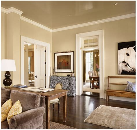interior home decorating picture of brown interior decorating ideas
