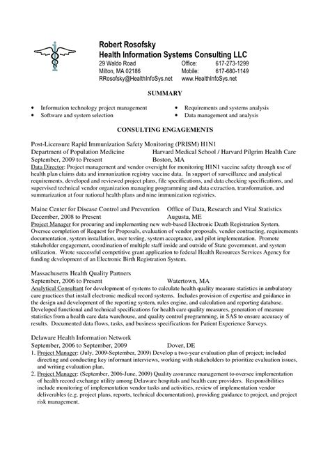 Senior Project Manager Resume Summary by It Project Manager One Page Resume Best Summary Exles