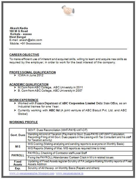 career profile exles for resume 47 images executive resume professional resume sles 6