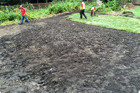 regrading backyard backyard regrading day 2 lots of guys lots of sod