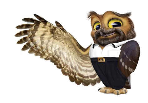 the owl character design sketches on behance