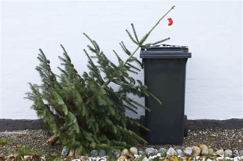 montreal christmas tree recycling 2018 dates